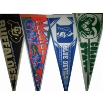 College Logo Pennants